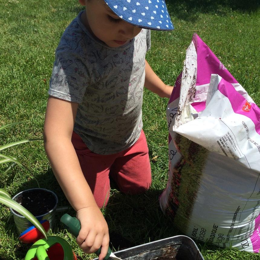 and gardening
